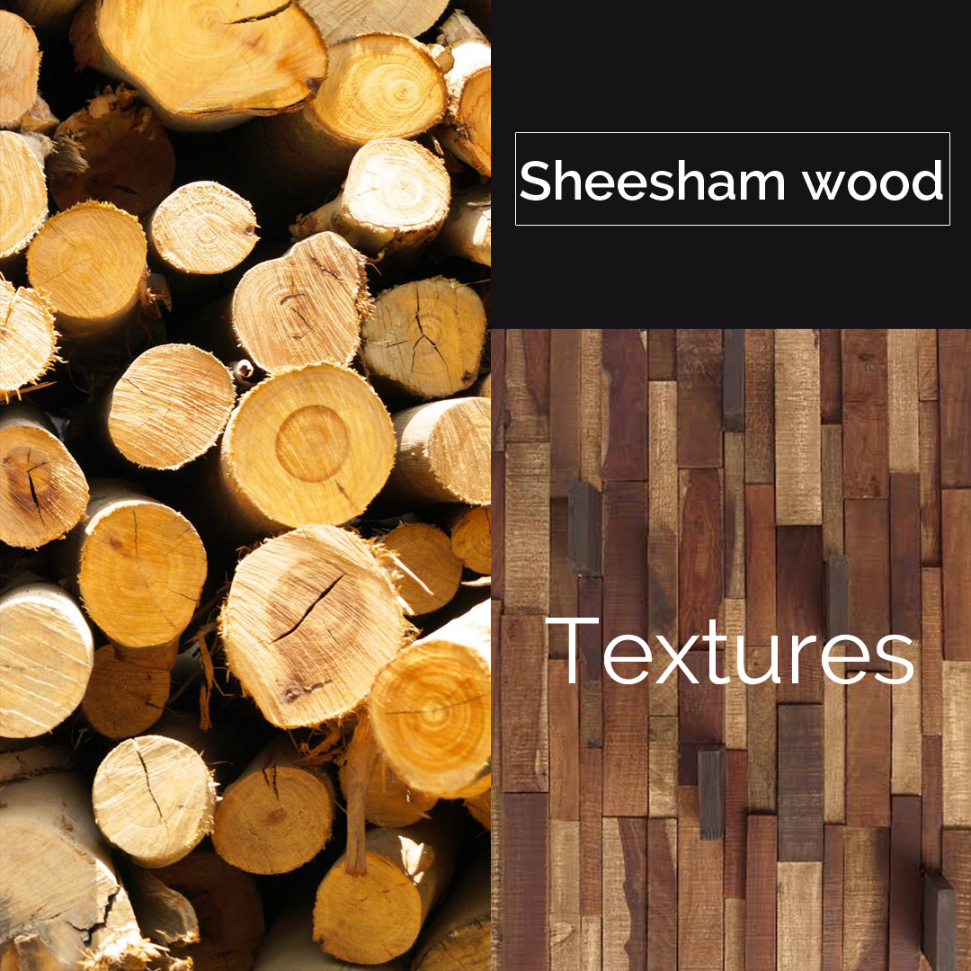 Why Sheesham wood is the best choice for home: A Complete Guide